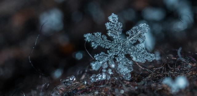 macro-photography-of-snowflake-813870